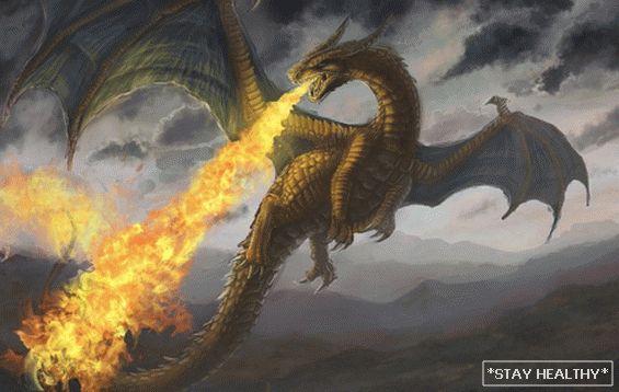 pierderea în greutate a lui dragon)