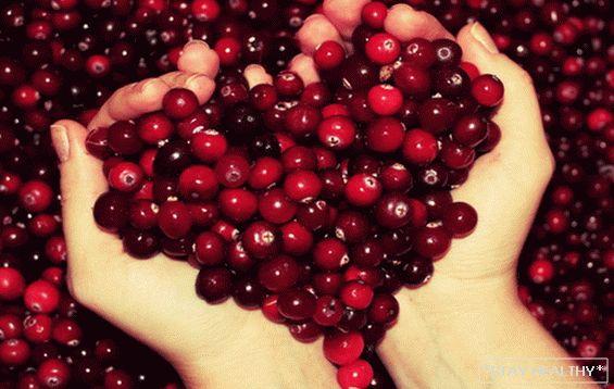 cranberries uscată pierdere în greutate)